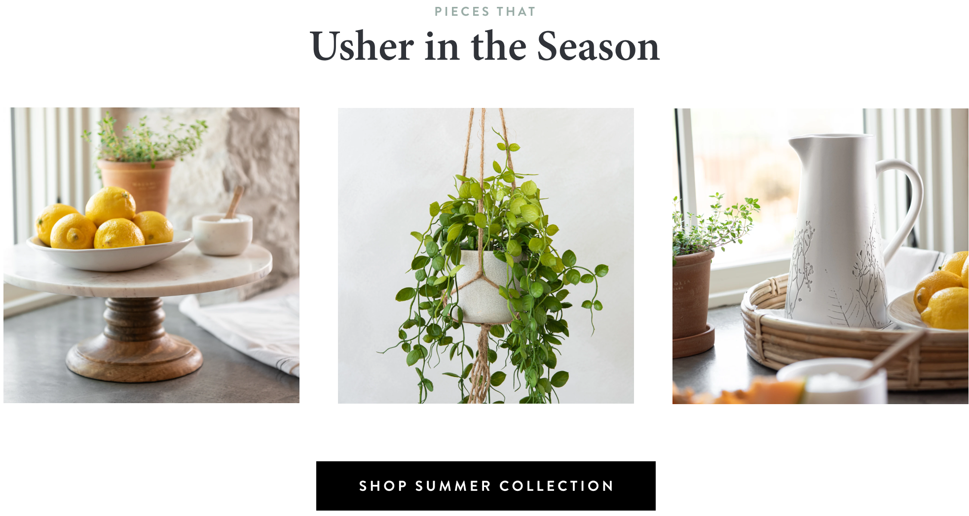 the summer collection is here. shop now.